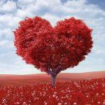 Kimicor. 12 maneras de amarse a uno mismo