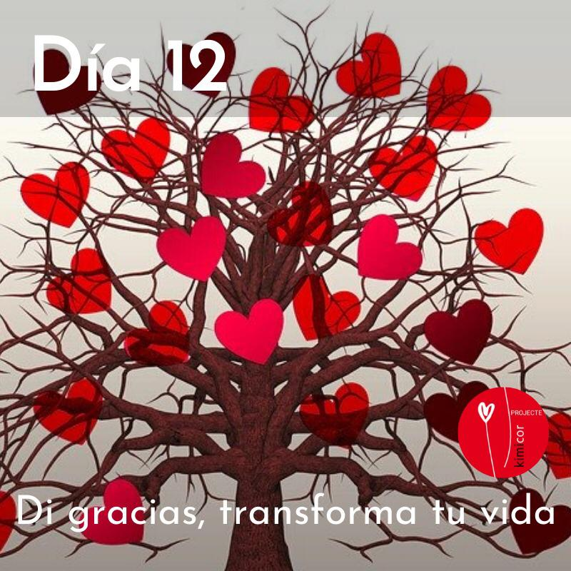 Di gracias transforma tu vida dia 12 Kimicor