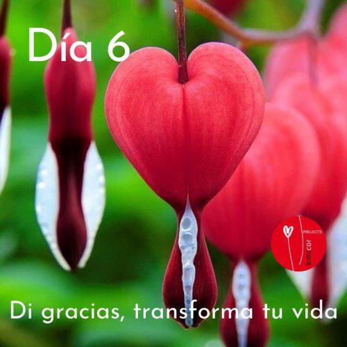 Di gracias, transforma tu vida día 6