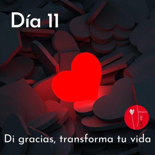 Di gracias, transforma tu vida dia 11 Kimicor