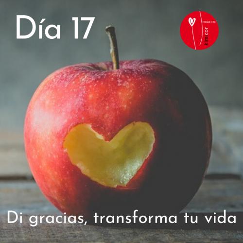 Dia 17 - di gracias, transforma tu vida