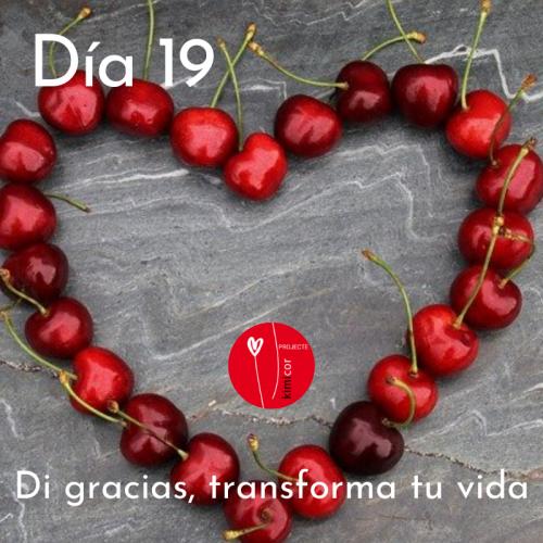 Dia 19 - di gracias, transforma tu vida